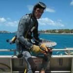diving_3-300x278